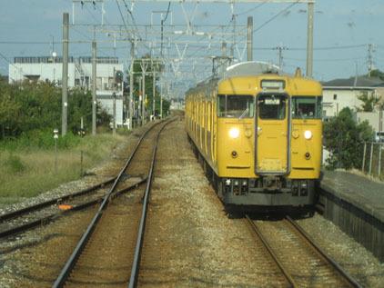 IMG_4834黄色113系.JPG